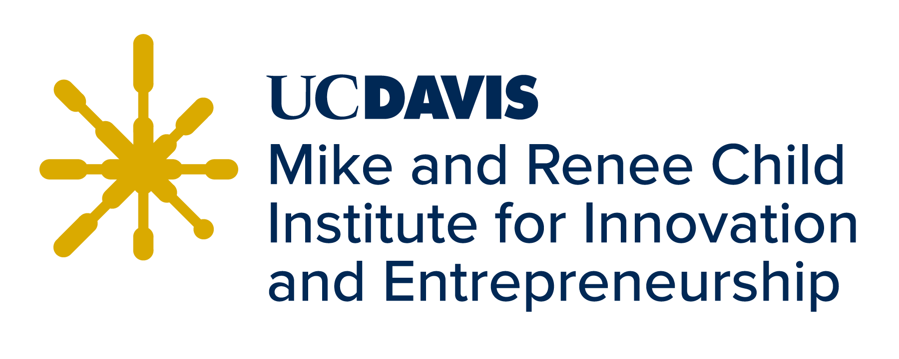 Institute for Innovation and Entrepreneurship